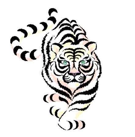 Tiger Stock Vector - 5802777