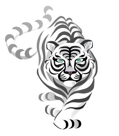 Tiger Stock Vector - 5802842