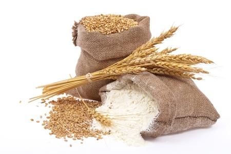 wheat crop: Grano de trigo y harina