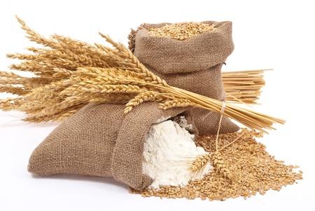 wheat flour: Flour and wheat grain Stock Photo