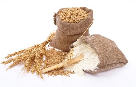 Flour and wheat grain  photo