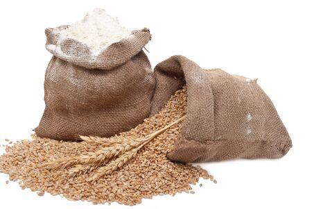 bolsa de pan: Grano de trigo y harina