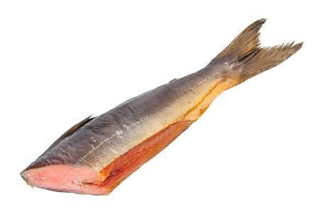 rout: Chum salmon Stock Photo