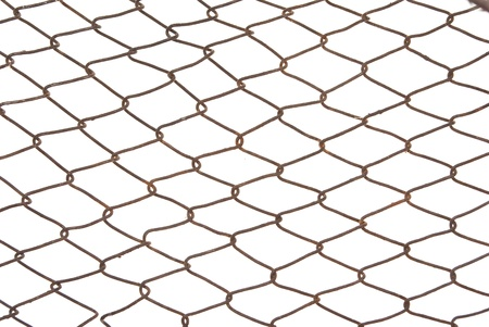 Wired fence Stock Photo - 11869953