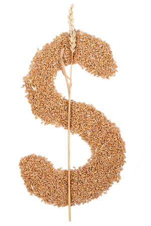 Dollar symbol made from wheat grain  photo