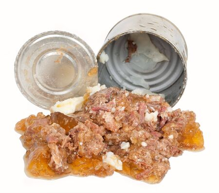 Meat canned dog food photo