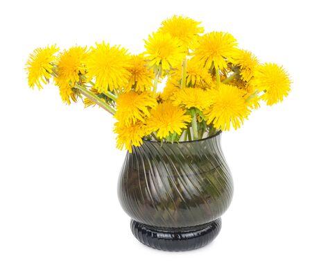 glass vase: Dandelion flowers in glass vase