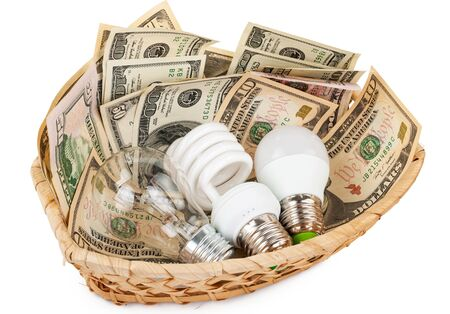 basket: Light bulbs in the basket with money