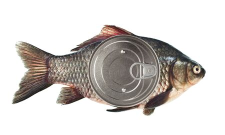 canned: Canned fish
