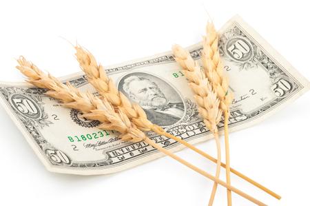 Dinero y orejas de trigo Foto de archivo