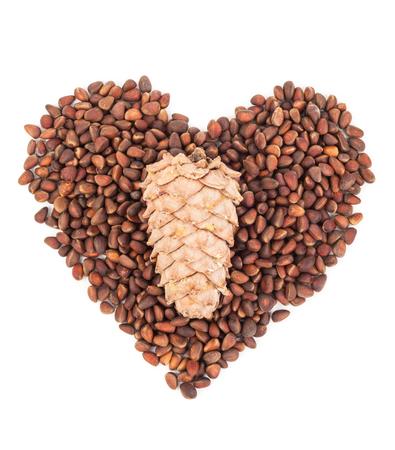 cone shell: Cedar pine nuts.Heart