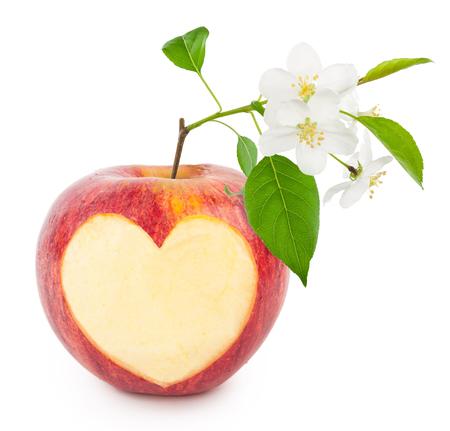 pomme rouge: coeur de pomme rouge avec des feuilles et des fleurs