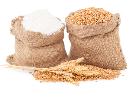 gunny:  Flour and wheat grain  Stock Photo