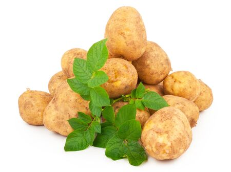 Yellow potatoes with leaves on a white background Zdjęcie Seryjne