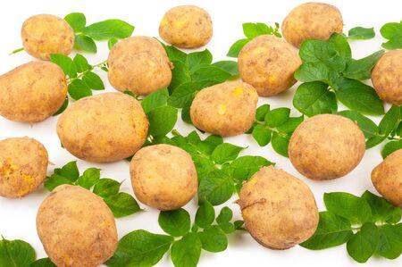 Yellow potatoes with leaves on a white Zdjęcie Seryjne