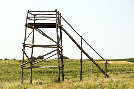 hunters tower: Lookout tower in the sunny field