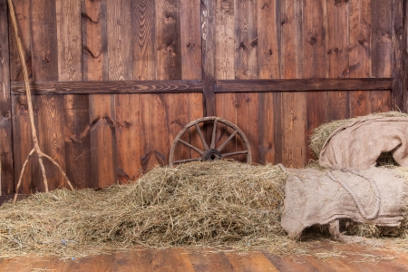 horse carriage: Wood and hay background inside rural barn