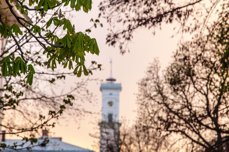 old town guildhall: Town hall tower among old roofs at sunset Lviv Ukraine