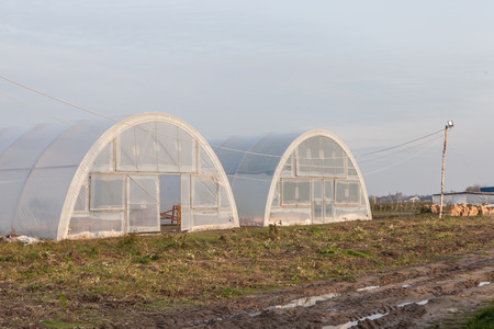 Greenhouse for the cultivation of agricultural food produce