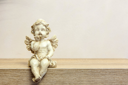 Angel figure on book shelf next to succulent with copyspace Standard-Bild - 101538764