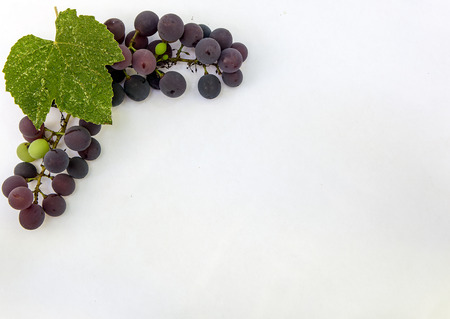 Fresh ripe sweet grape isolated white background. Copy space. Top view, high resolution Imagens