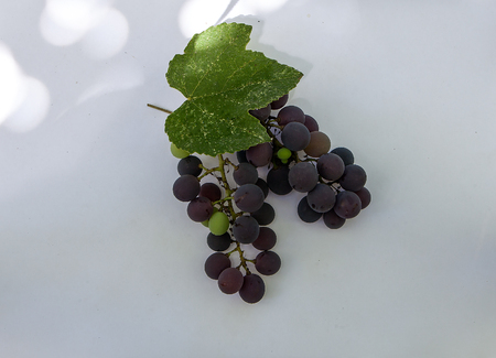 Fresh ripe sweet grape isolated white background. Copy space. Top view, high resolution Standard-Bild - 106989831