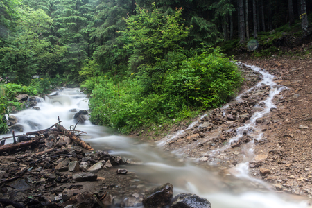 Fast and rapid mountain stream torrent after rain Standard-Bild