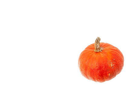 orange pumpkin crop isolated on white background with copy space