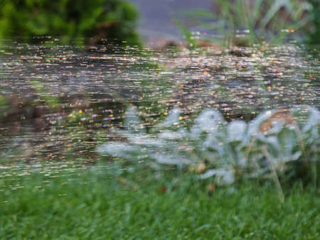 Stream of Rapidly Flying Water Drops On a Blurred Background of a Green Lawn. Can Be Used in Design Projects
