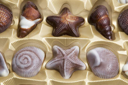 Chocolate candies formed as different seashells