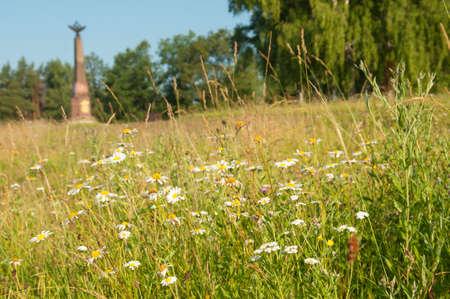 decreased: Flowers near the Borodino battle memorial in Utitsa village Stock Photo