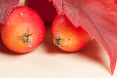 Crab (Paradise) apples on a wood board, autumn picture, macro Stock Photo