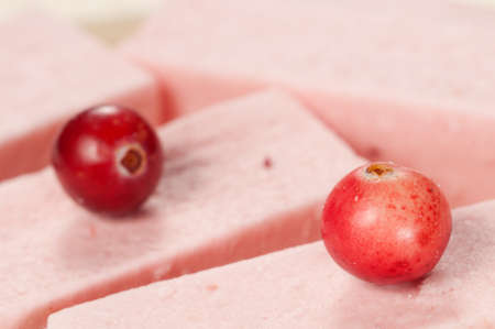 Pastille with cranberry, close up shot, local focus