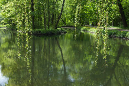 Landscape with a pond in Sokolniki park, Moscow, Russia
