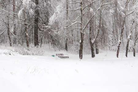 Winter landscape with a park, snowstorm Stock Photo