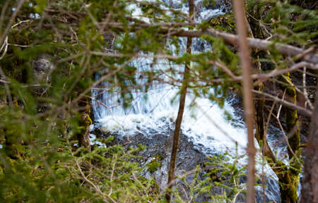 great smokies: Mountain Stream in the Spring on Sunny day Stock Photo