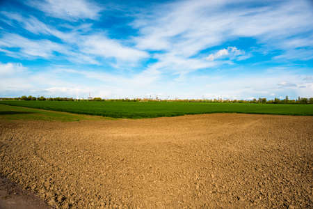 field stripped: agricultural field in spring time and blue sky in Germany