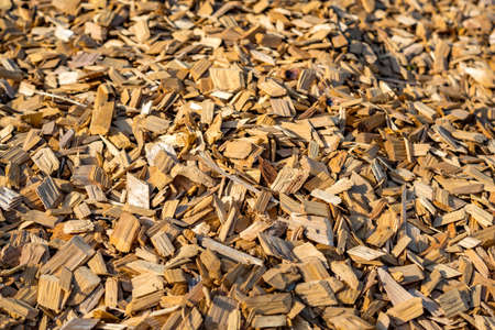 Closeup of wood chip path covering in Germany
