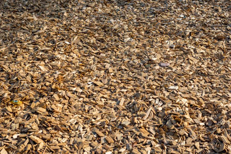 wood chip: Closeup of wood chip path covering in Germany