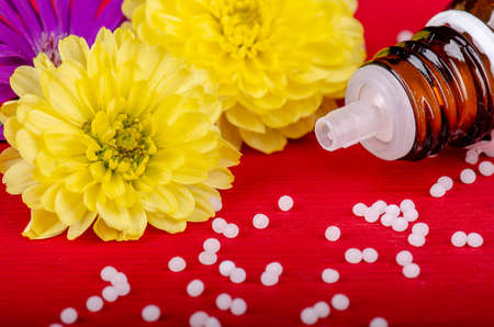 homeopathic globules on a red wooden background with yellow flowers