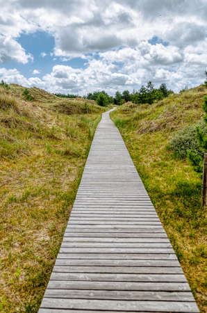 wooden bridge in a meadow, cloudy sky