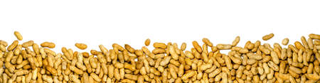 panorama of peanuts on white background, banner isolated 版權商用圖片