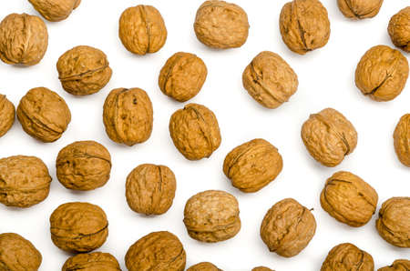 some walnuts on a white background, isolated 版權商用圖片