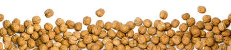 walnuts as border, banner or panorama, isolated on white background