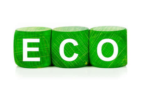 term eco - built from green wooden cubes on white background, isolated