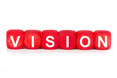 term VISION - built from red wooden cubes on white background, isolated