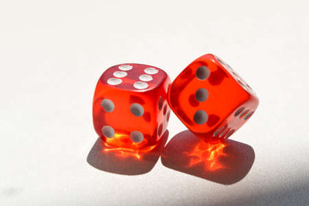Dice on a white background . Game concept. Games of chance.