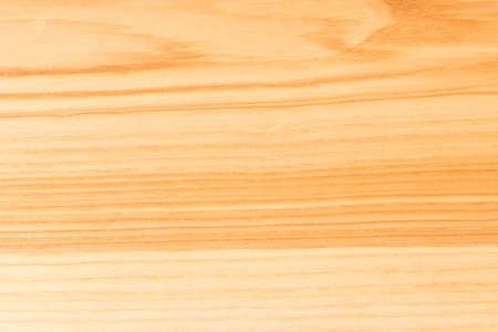 Natural wooden background. The texture of the wood. Conceptual background for designers.