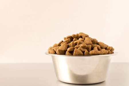Bowl with dog food on a light background . Close up