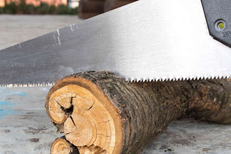 Sawing logs with a hand saw in the backyard. Close up Stock Photo